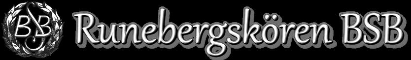 Runebergskören BSB – manskörsmusik från Borgå sedan 1923